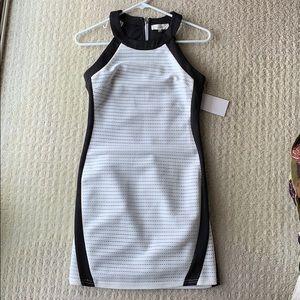 sugarlips black and white body con mini dress